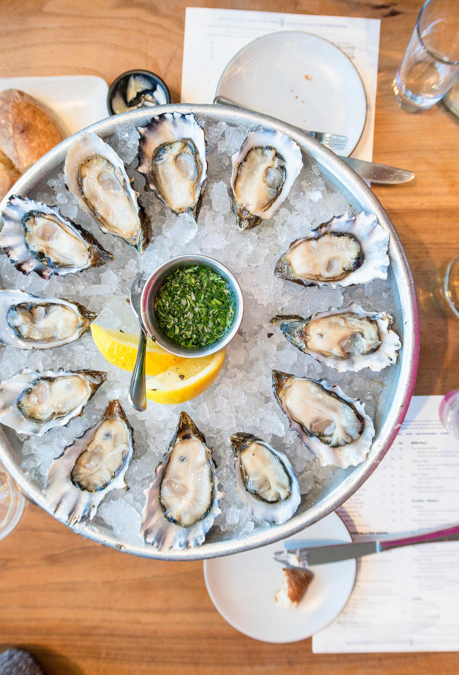 hog island oyster co oysters jmeyering creative - J.Meyering Creative