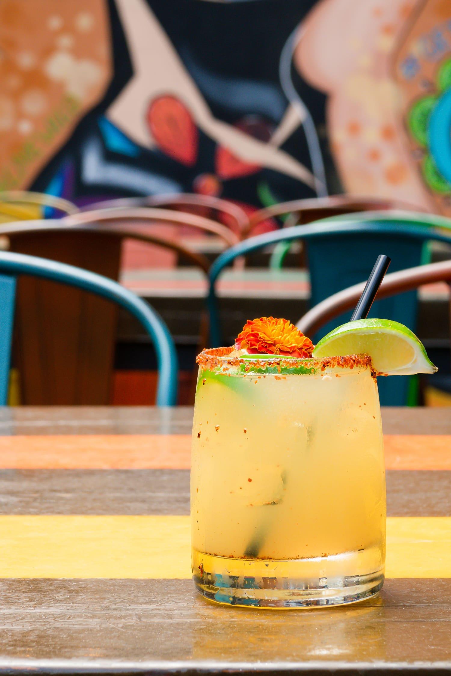 wild salsa margarita jmeyering creative - J.Meyering Creative
